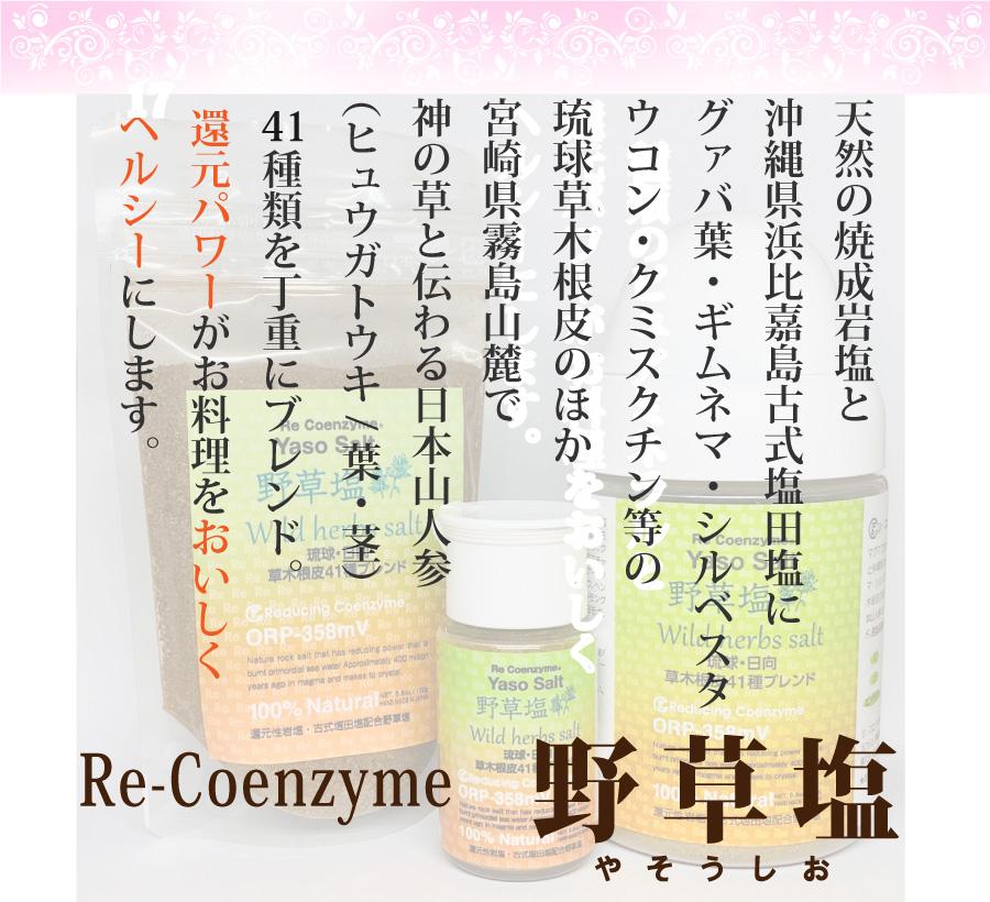 リコエンザイム野草塩(大ボトル)